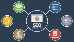 SEO services WordPress Services